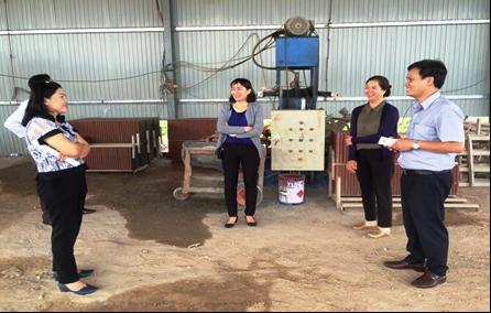 Hỗ trợ ứng dụng máy móc thiết bị tiên tiến trong sản xuất gạch không nung Terrazezo